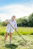 Woman on a haymaking Royalty Free Stock Photos