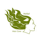 Woman head with wavy hair and leaves in it. Herbal hair care and beauty salon concept. . Vector illustration in eps8 format Royalty Free Stock Photography