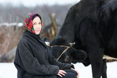 Woman in a headscarf near the cow Royalty Free Stock Photo
