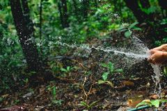Woman heaving fun with hosepipe splashing water. In the jungle with jungle in the background Stock Photo