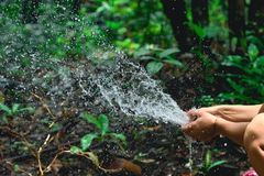 Woman heaving fun with hosepipe splashing water. In the jungle with jungle in the background Stock Photos
