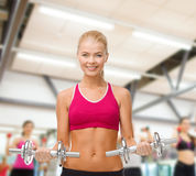 Woman with heavy steel dumbbells Royalty Free Stock Image