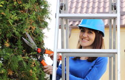 Woman in helmet on ladder uses gardening tool to trim bushes Stock Image