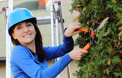 Woman in helmet on ladder uses gardening tool to trim bushes Royalty Free Stock Image