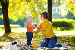 Woman and her adorable little grandson having a picnic Stock Photos