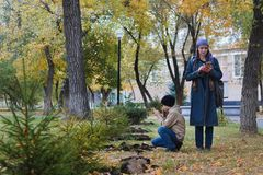 A woman and her child taking pictures on a mobile phone of a small tree in the Park in the fall stock photos
