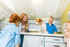 Woman and her children with their dog at veterinary doctor Stock Image