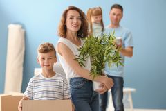 Woman and her cute son with houseplant and box indoors. Moving into new house royalty free stock photo