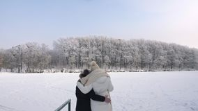 Woman with her daughter looking at the frost trees stock footage