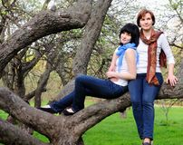 Woman and her daughter sitting on a tree Royalty Free Stock Images