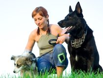 Woman with her dog Stock Photography