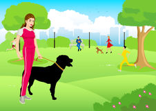 Woman with her dog at city park Stock Images