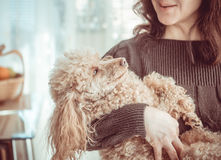 Woman with her dog at home. Royalty Free Stock Photo