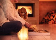 Woman with her dog sits at the floor and eating pizza . stock photo