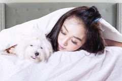 Woman and her dog sleeping under blanket Royalty Free Stock Images