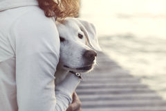 Woman and her dog together outdoors Royalty Free Stock Photos