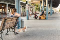 A woman with her dog waiting for the train in the platform of th. Larissa, Greece - June 11th, 2018: A woman sitting with her litle dog waiting at the passengers Stock Photography