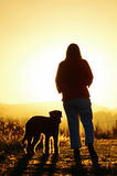 Woman & her dog walking in together in sunset Stock Images