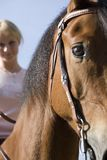 Woman and her horse Stock Image