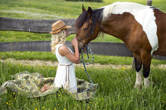 Woman and her horse. A beautiful blonde woman on a grassy meadow taking care of her horse stock images
