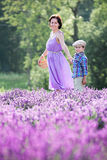 Woman and her little son in lavender field Stock Photos