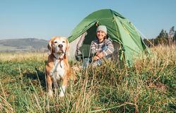 Woman with her pet beagle dog rest in camping tent royalty free stock photography