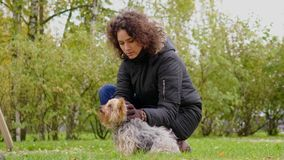Woman with her pet dog.  stock footage