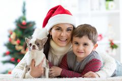 Woman and her son celebrating christmas with furry friend. Mother and kid with terrier dog. Pretty child boy with puppy at x-mas t Stock Photos