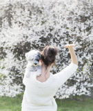 Woman  with  her white poodle  dog in a spring garden Royalty Free Stock Photography