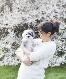 Woman  with  her white poodle  dog in a spring garden Stock Photography