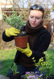 Woman with herbs Stock Images