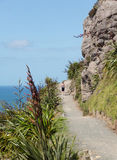 Woman hike The Mount at Tauranga in NZ Stock Image