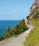 Woman hike The Mount at Tauranga in NZ Stock Images