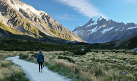 A Woman Hiker Approaches Mt. Cook on the Hooker Valley Track. Stock Photo