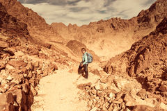 Woman Hiker with backpack enjoy view in desert Stock Image