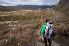 Woman hiker with backpack tramping on Tongariro national park Stock Images