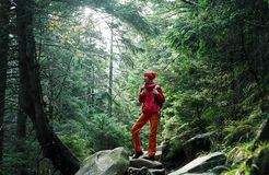 Woman hiker with backpack, wearing in red jacket and orange pants, walking in the forest in mountains stock image