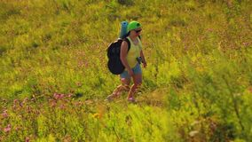 Woman hiker climbs a hill with a backpack over his shoulders and binoculars. Shooting from the side stock video