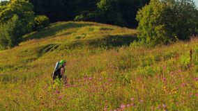 Woman hiker climbs uphill with a backpack over her shoulders and binoculars. Overall plan stock video footage