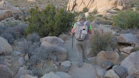 Woman Hiker Coming Down The Hill Along The Trail In The Mojave Desert, Back View. Hiking woman in sun protection clothing with a backpack and trekking sticks, it stock video footage