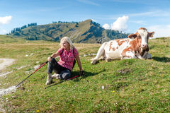 Woman Hiker with Cow Stock Images