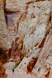 A Woman Hiker in The Grand Wash Slot Canyon. Royalty Free Stock Images