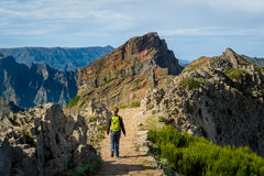 Woman hiker with green backpack doing her hike at Madeira island rocks. royalty free stock image