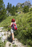 Woman hiker high in the the mountain pointing the direction with her walking pole royalty free stock photos
