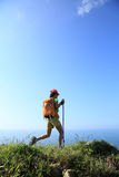 Woman hiker hiking on seaside mountain Stock Photography