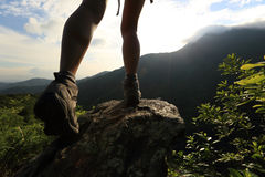 Woman hiker hiking stand on cliff Stock Image
