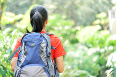 Woman hiker in jungle Royalty Free Stock Photography
