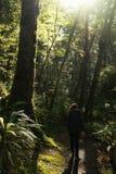 Woman hiker at Kepler track Royalty Free Stock Image