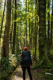 Woman hiker at Kepler track Royalty Free Stock Images