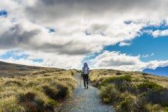 Woman hiker on Kepler Track. Stock Photos